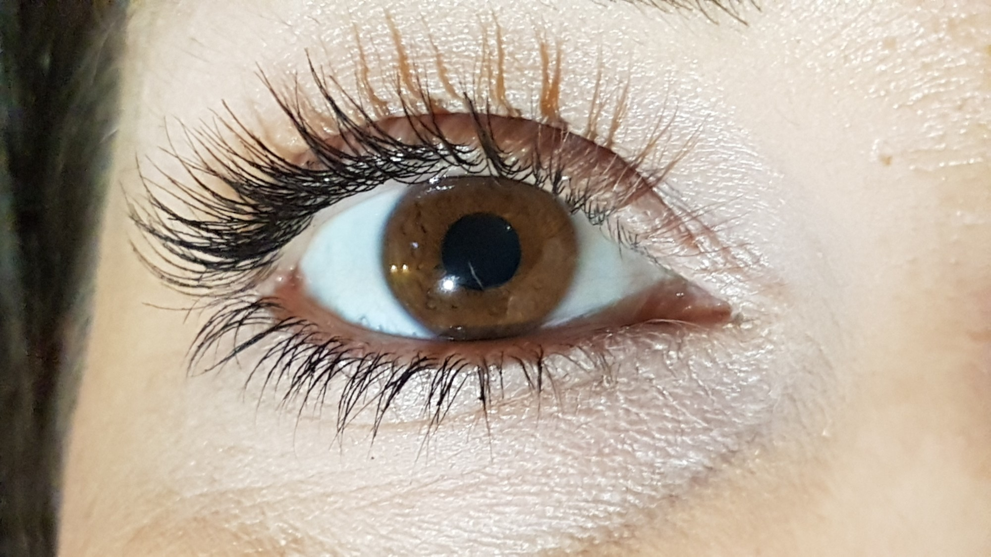 Are Eyelash Extensions Worth It? Reasons They Are!   The ...